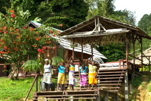 3-daagse tours Suriname