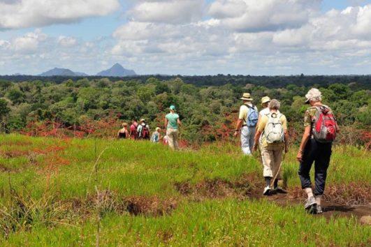 8-daagse tours Suriname