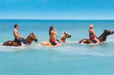 Paardrijden zee jamaica