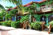 Hamanasi Adventure & Dive Resort
