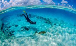 Duiken Bonaire
