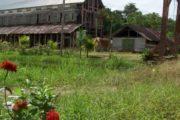 Peperpot Fietstour Suriname