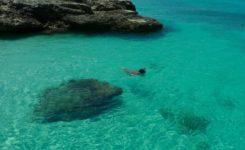 Aruba duiken snorkelen