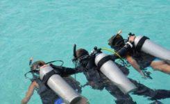 Coral Divers 2 Duiken