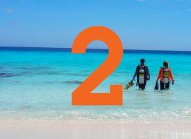 2. Shorediving (Small)